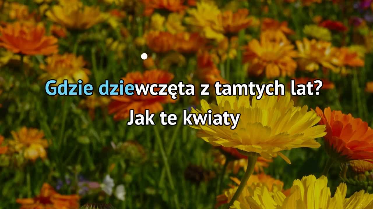 Slawa Przybylska Gdzie Sa Kwiaty Z Tamtych Lat Karaoke